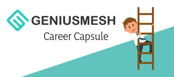 GeniusMesh Career Capsule